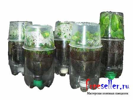 Как сделать парник из пластиковых бутылок своими